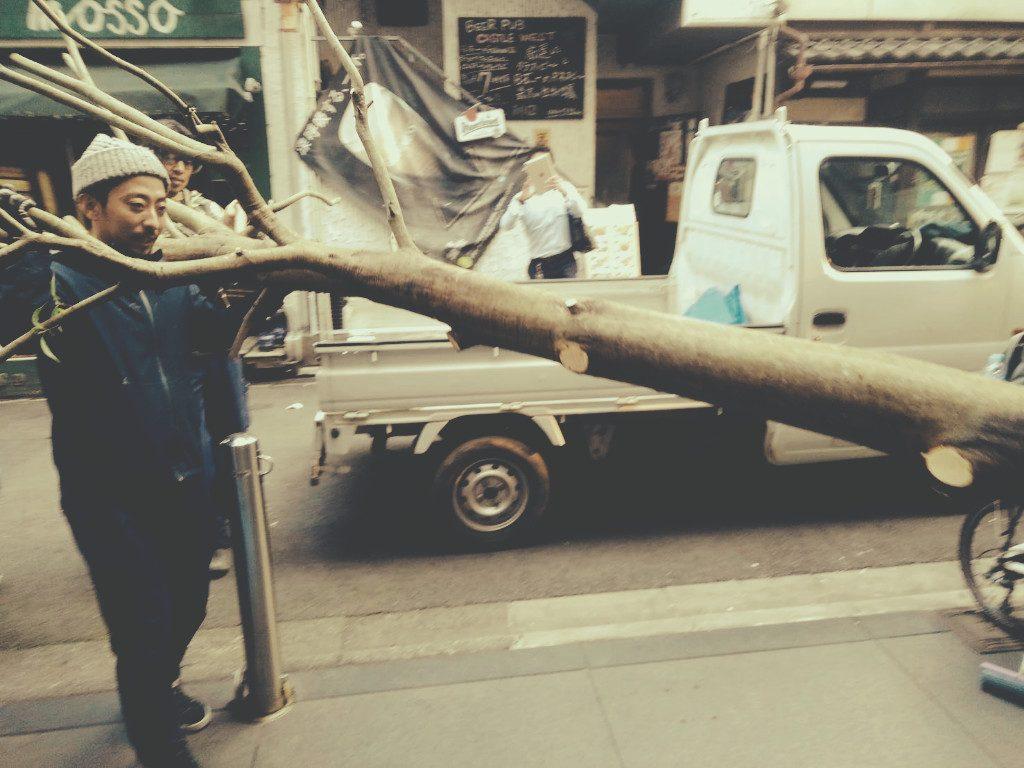 京都・木屋町のBAR着工しております!そして、木を運び入れました!;
